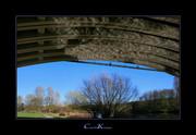 Water Reflections under the Bridge