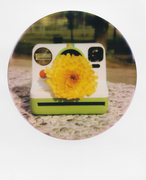 Instant flower