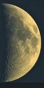 Måne i dagsljus