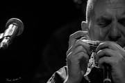 chromatic harmonica