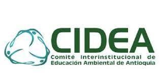 CIDEA: un primer acercamiento conceptual.