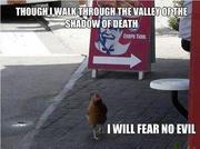 Psalm 23 Chicken