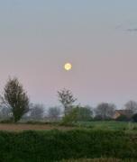 Coucher de lune...