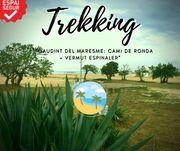 "TREKKING ""GAUDINT DEL MARESME: CAMI DE RONDA + VERMUT ESPINALER"""
