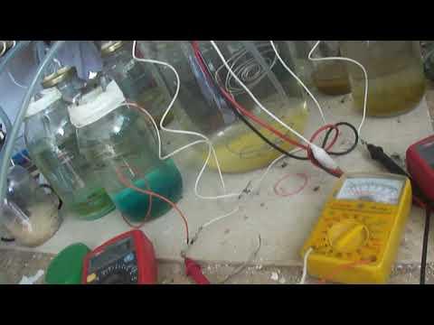 ...Memorias de un Laboratorio Andante De Ciencias Naturales y Estudio de las Pilas Electricas...