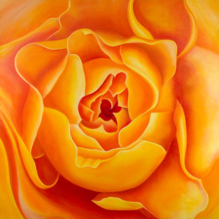 Just Waiting - Free Spirit Rose