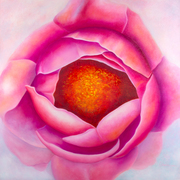 Centering - Pink Peony