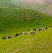 Shawal Valley Norh Wazisitan, Pakistan