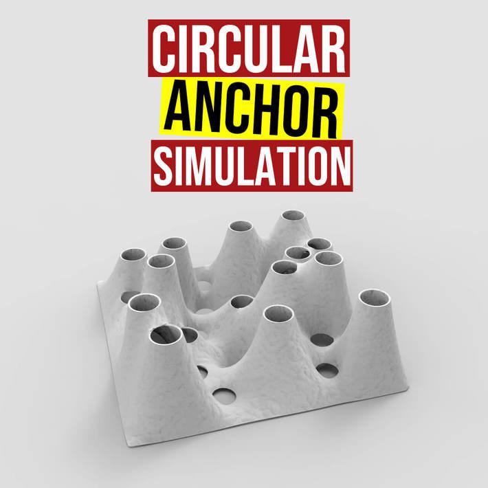 Circular Anchor Simulation