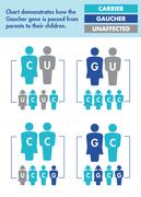 Common Ashkenazi Genetic Diseases chart
