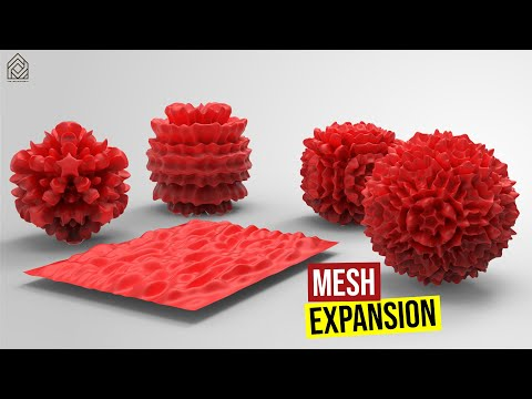 Mesh Expansion
