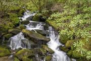 Roadside Waterfall in the GSMNP