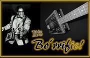 Be Like Bo!