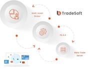 Forex Trading App  Forex Trading Platform  MT5 CRM