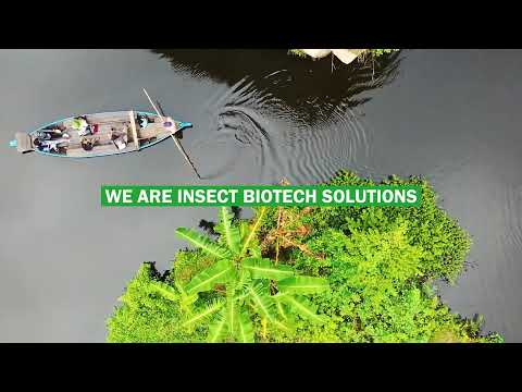 We are Insect Biotech Solutions