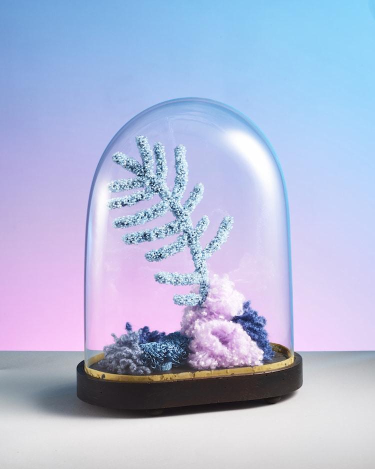 ხელოვნება, წყალმცენარეები, წყლის ქვეშეთი, ფოტოგრაფია, შემოქმედება, არტი, art, qwelly, blog