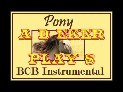 Pony             ( instrumental )                 A. D. Eker       2021