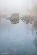 Landscape in the fog 1