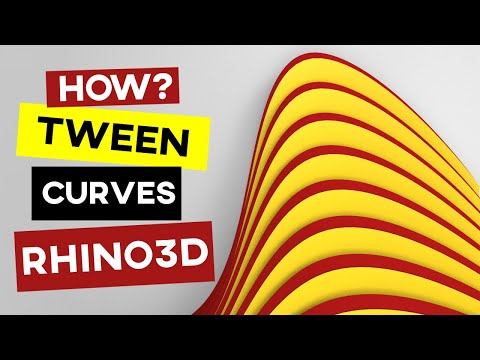 Rhino Tutorial (Parametric Curves)