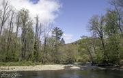 Ocunaluftee River in the GSMNP
