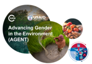 Gender data for climate solutions: New cross-sector evidence and strategies for gender-responsive climate action and resilience