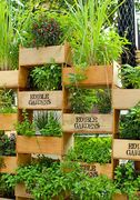 *Introduction to Vertical Gardening
