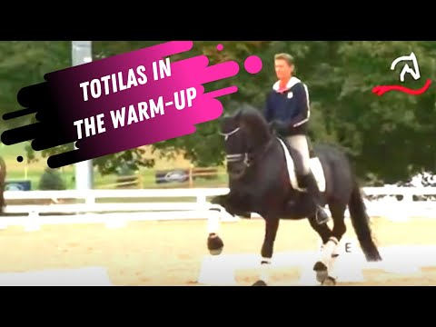 Totilas & Edward Gal Grand Prix Dressage Warm-Up At The World Equestrian Games
