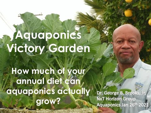 1:26:2021 UPDATE THE AQUAPONICS VICTORY GARDEN What % of your diet can aquaponics actually grow?