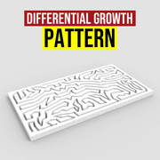 Differential Growth Pattern
