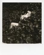 Shelbie Ivy