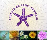 """CURSO FLORAIS DE SAINT GERMAIN """"O Poder das Flores no Equilíbrio da Alma"""