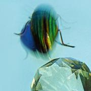 Crystal Escape