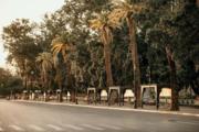 Merrakesh Morocco 2020