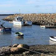 Rosslare safe harbour paintout