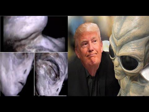 Трамп хотел рассказать о Галактической Федерации.