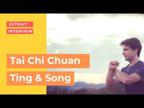 Ting & Song - Tai Chi Chuan et transformation