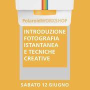 workshop base polaroid