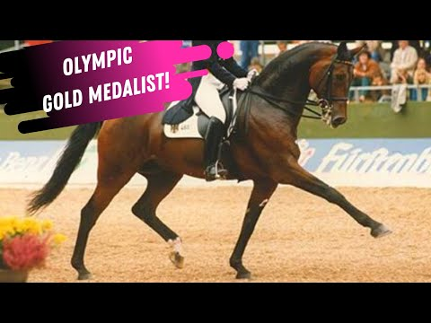 Olympic Gold Medalist Dressage Rider Nicole Uphoff & Rembrandt