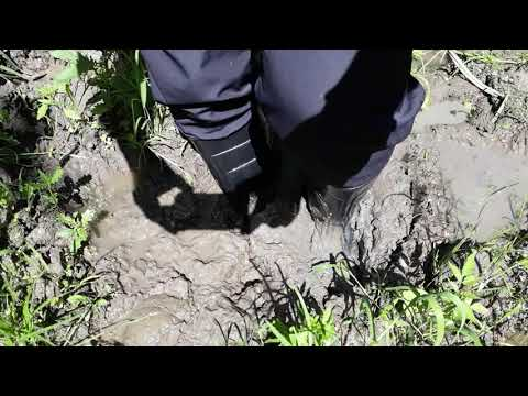 Rubber boots in mud 113