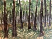 Le bois de fougères
