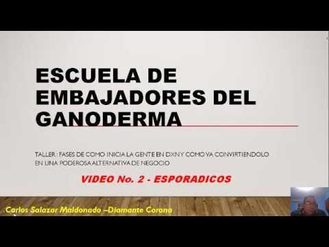 TALLER COMO GUIAR AL ÉXITO A TUS CONSUMIDORES --2 DE 5