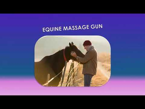 Horse Massage-Gun - Essential For Your Own Horses