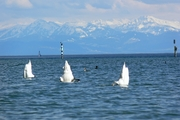 Bodensee-P1490052
