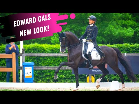 New Look - New Horses - Edward Gal Is On Top At The Dutch Dressage Championships With Team Totilas!