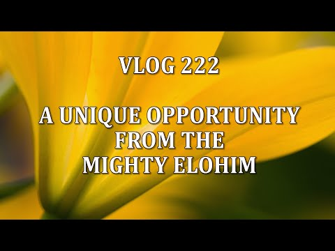 VLOG 222 - A UNIQUE OPPORTUNITY FROM THE MIGHTY ELOHIM