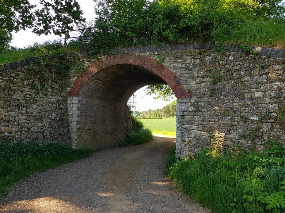 Occupational bridge