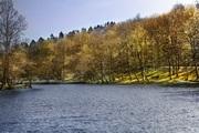 Au Milieu du Lac