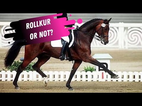 Rollkur or Not? Nicole Uphoff & Rembrandt In The Grand Prix Dressage Warm-Up At Aachen