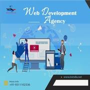 IISINDIA-Best Website design company in Delhi