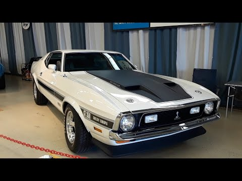1971-1973 Mustang Mach 1 & Boss Mustang and A Rare Shelby Europa At the 2021 Ford Nationals